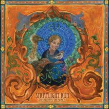 Straylight Run - The Needles The Space