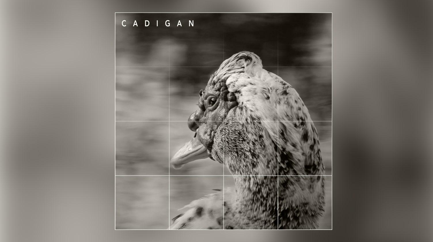 Cadigan